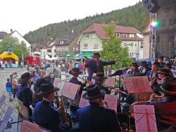 Harmonie beim Dorffest 2016_5